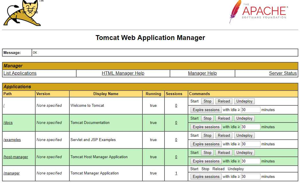 Why JAVA Tomcat Hosting?